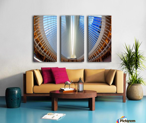 Oculus Split Canvas print