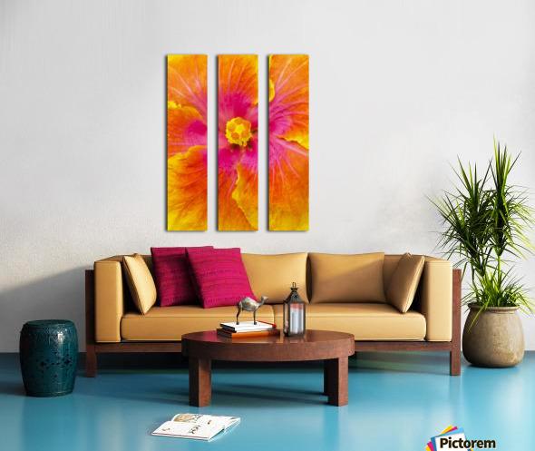 Close-up macro shot of a beautiful orange, pink and yellow Hibiscus flower; Honolulu, Oahu, Hawaii, United States of America Split Canvas print