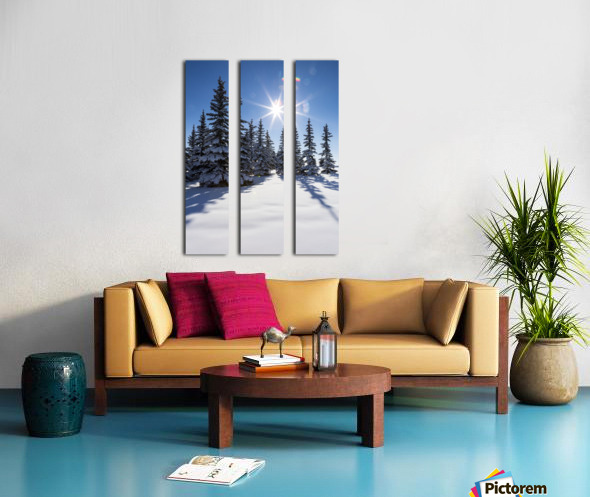 Snow covered evergreen trees on a snow covered hillside with blue sky and sun burst; Calgary, Alberta, Canada Split Canvas print