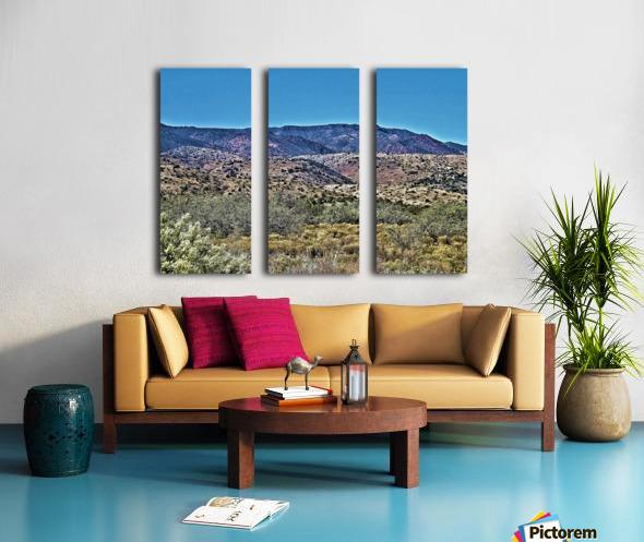 Jerome-1 Split Canvas print