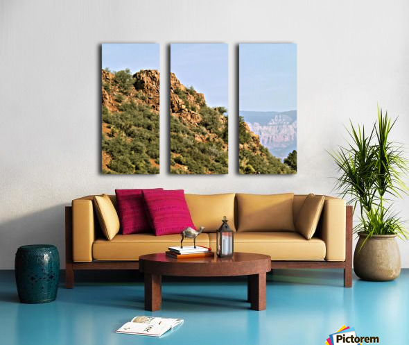 Jerome-5 Split Canvas print