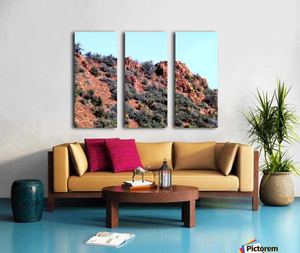 Jerome-6 Split Canvas print
