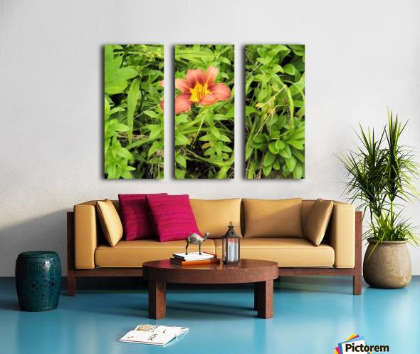 Oranger Lilly 4 Split Canvas print
