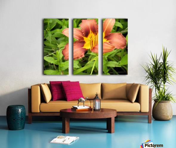 Oranger Lilly 3 Split Canvas print