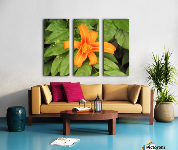 Orange Lilly 1 Split Canvas print