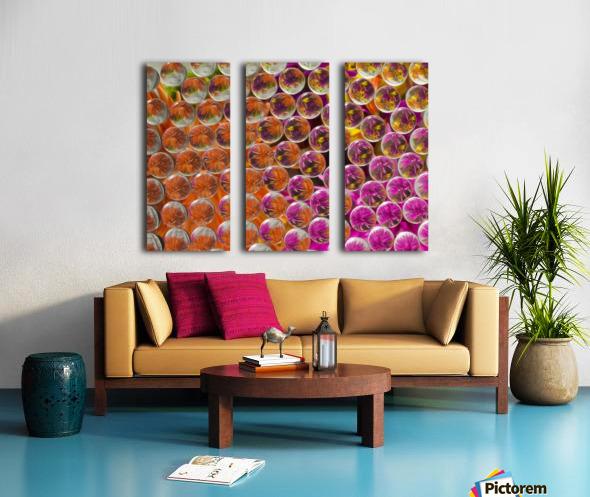 FLOWERS REFRACTION 4 Split Canvas print