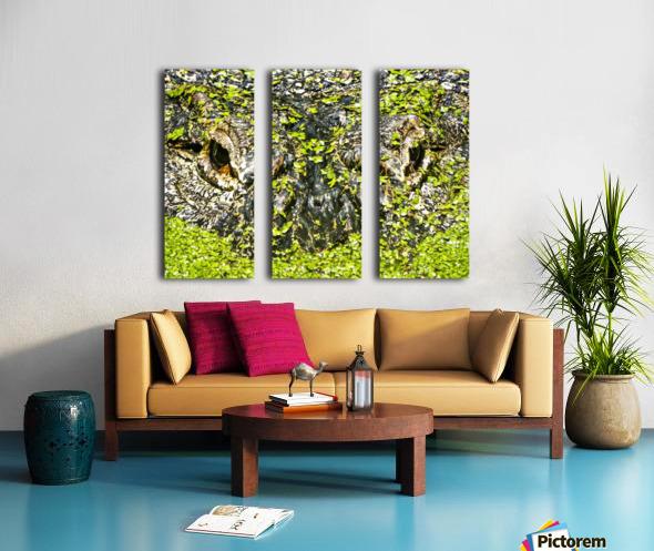 The Staredown Split Canvas print