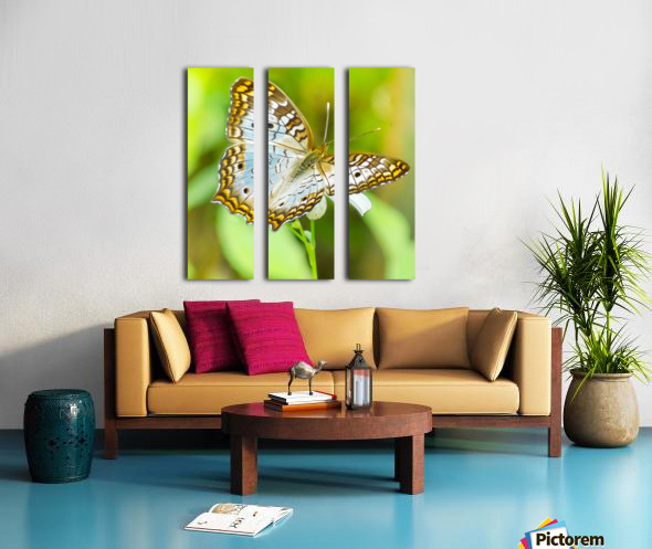 Psychedelic White Peacock Butterfly Split Canvas print