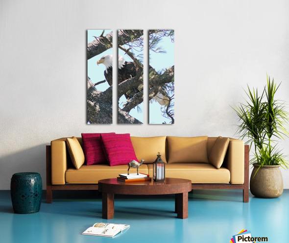 Watchful Split Canvas print