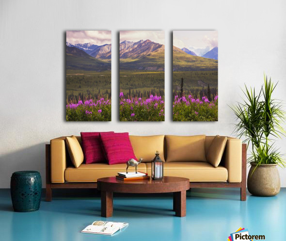 View Of The Chugach Mountains With Fireweed In The Foreground Along The Glenn Highway, Southcentral Alaska, Summer, Hdr Split Canvas print