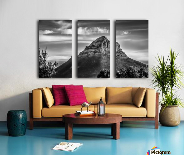 LionsHeadBW Split Canvas print