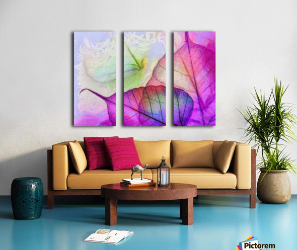 HC0268   Split Canvas print