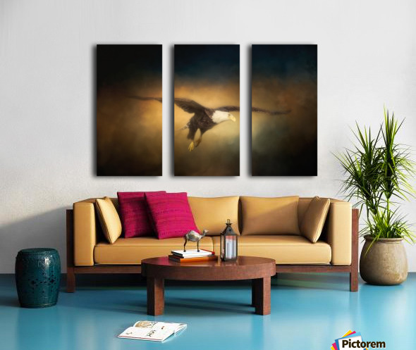 High Altitude Split Canvas print