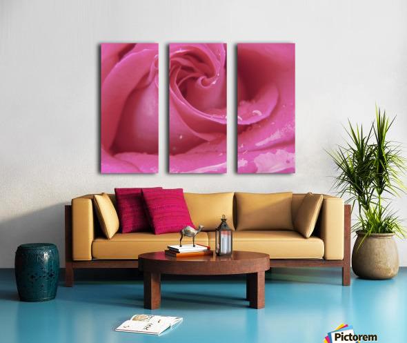 Rose Split Canvas print