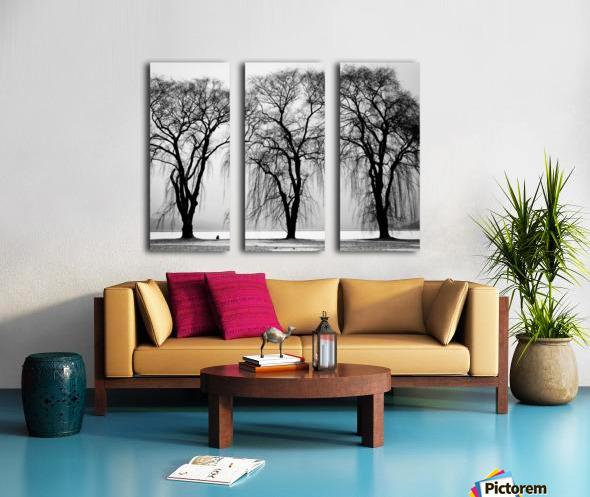 Trio Split Canvas print