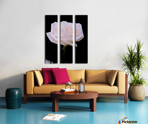 Rose for bride Split Canvas print