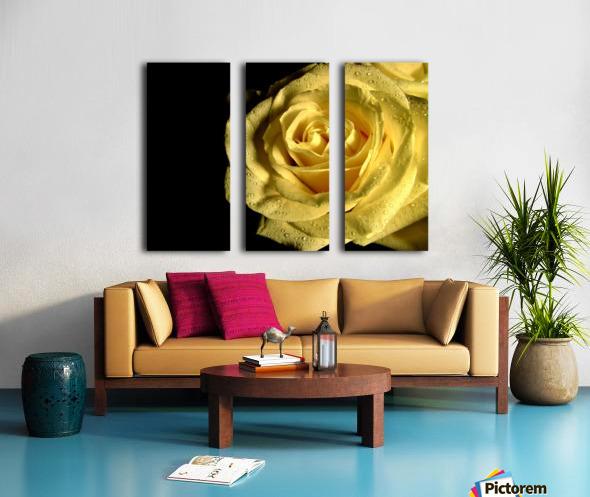 Yellow dew Split Canvas print