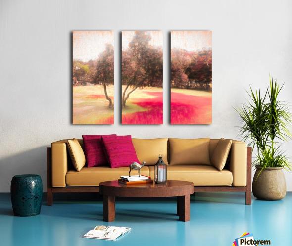 The Raanana Park 1 Split Canvas print