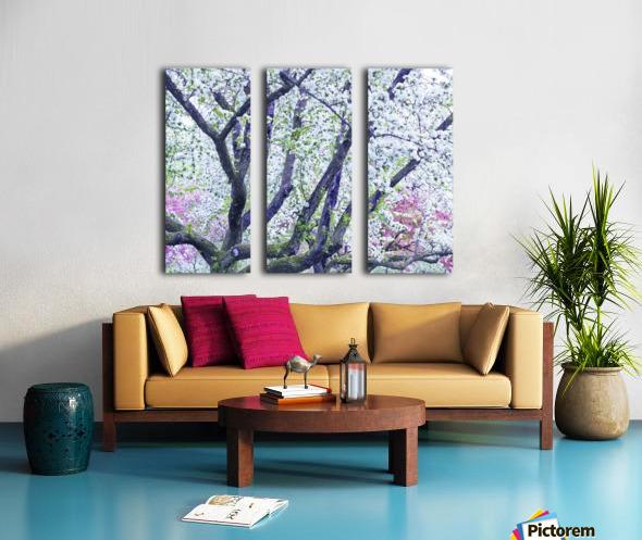 Cherry tree flowers Split Canvas print