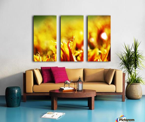 Flower Touch Split Canvas print