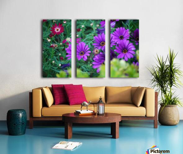Purple Flowers in Dana Point CA Split Canvas print