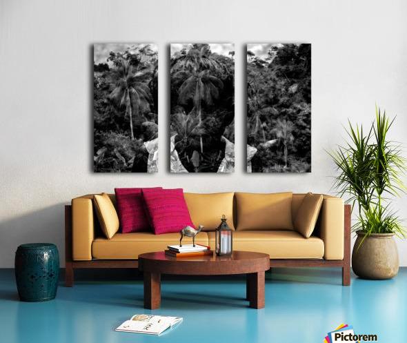 Guyana Child of the jungle  Split Canvas print