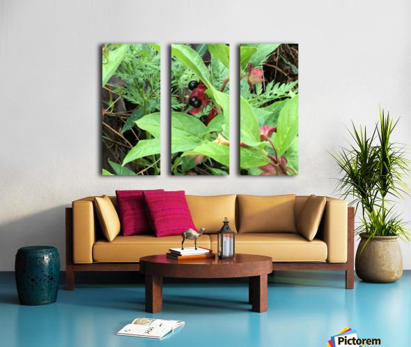 Shaded Berries Split Canvas print