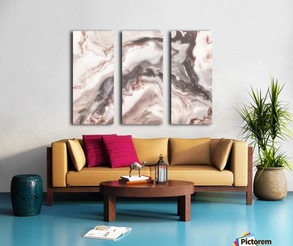 carrera Split Canvas print