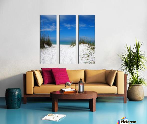 Coquina Dunes Split Canvas print