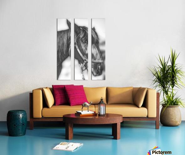A Real Beauty Split Canvas print
