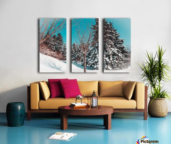 Snowy Pine Trees Split Canvas print