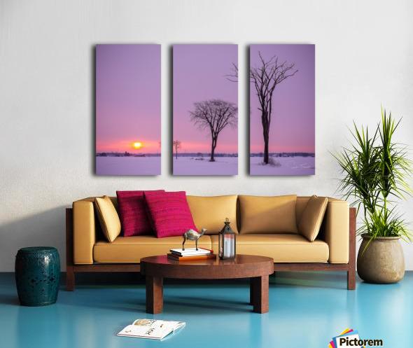 Mirabel mauve Split Canvas print