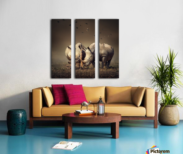 Two Rhinoceros with birds Split Canvas print