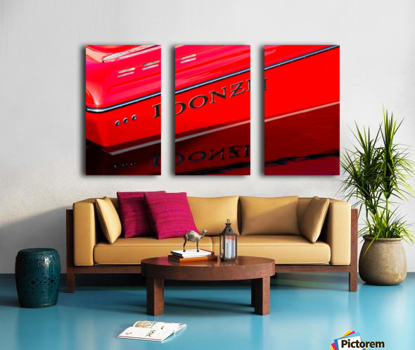 Donzi Split Canvas print