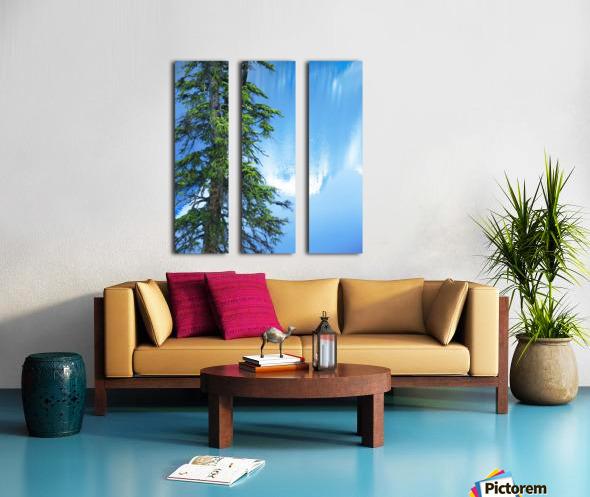 Natural order Split Canvas print