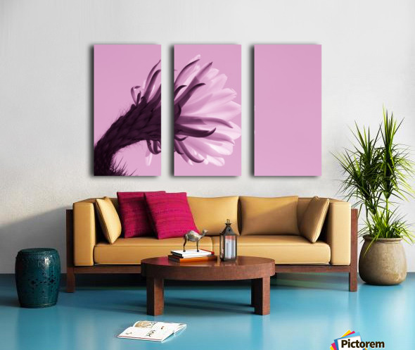 Cactus Flower in Pink Split Canvas print