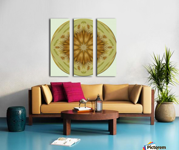 melon 1 Split Canvas print