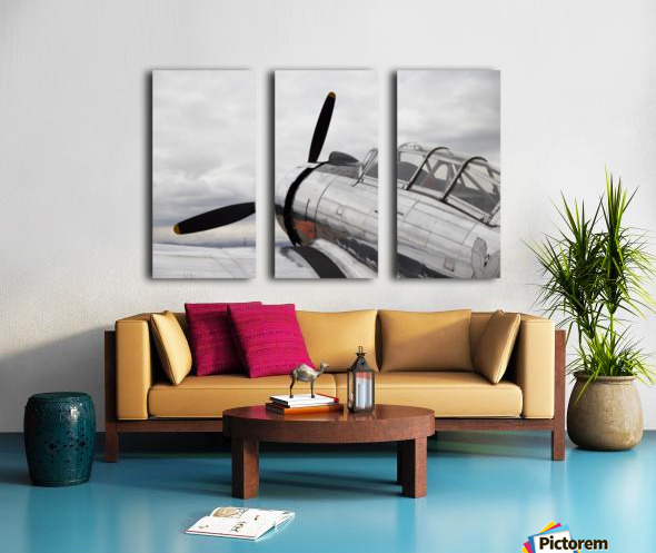P-53 Nose Split Canvas print