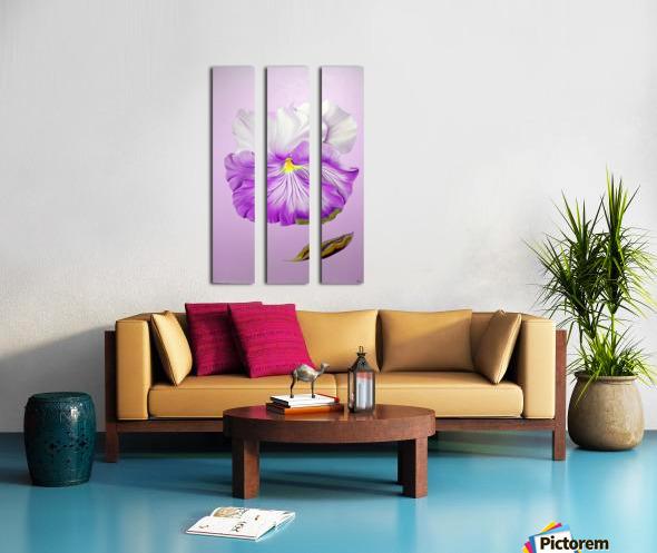Purple Pansy Split Canvas print