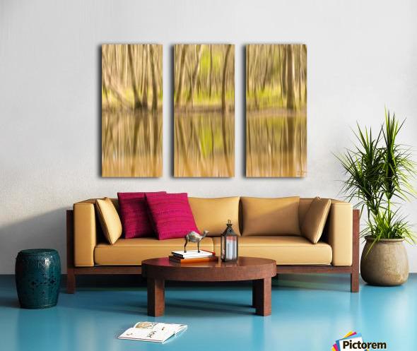 forest park reflections Split Canvas print