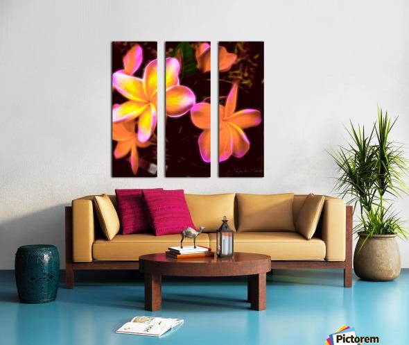 Frangipanis On The Glow Split Canvas print