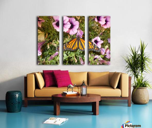 DSCN0649 Split Canvas print