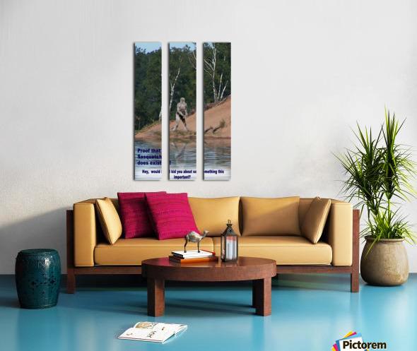 Sasquatch1 Split Canvas print