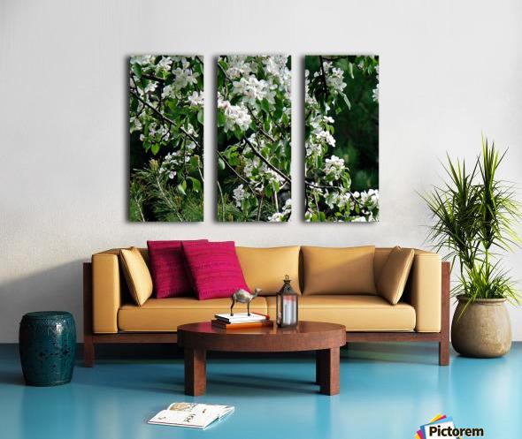DazzleBlossoms Split Canvas print