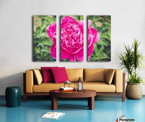 Deadly Beautiful Peonies Split Canvas print