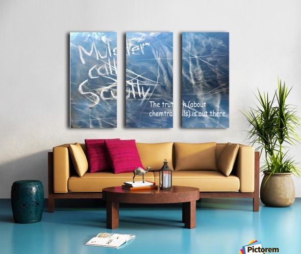 ChemTrails Split Canvas print