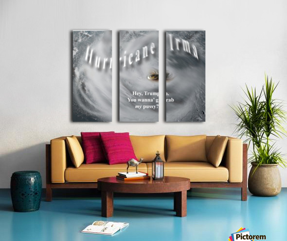 HurricaneIrma Split Canvas print