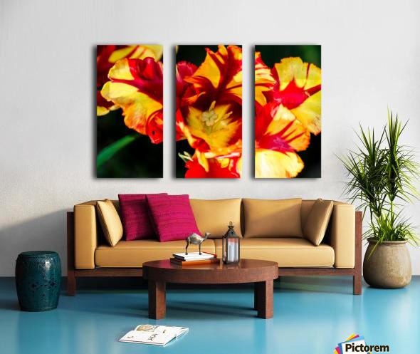 Tulip in Fringed Dress Split Canvas print