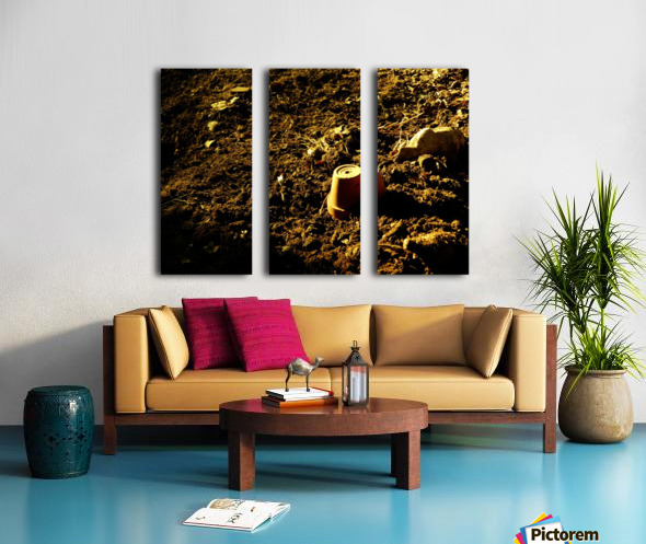A (12) Split Canvas print