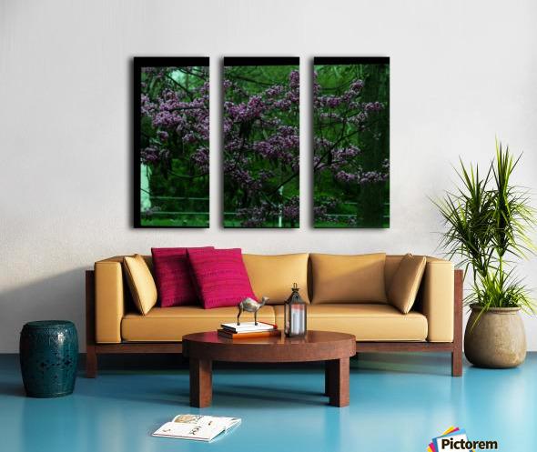 sofn-094A1D2D Split Canvas print